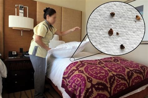 10 Worst Defects To Watch Out For In Hotel Rooms