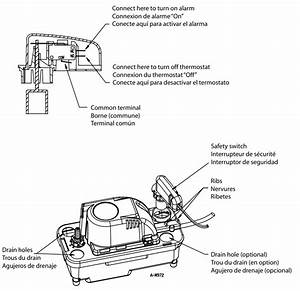 Little Giant Pump Wiring Diagram