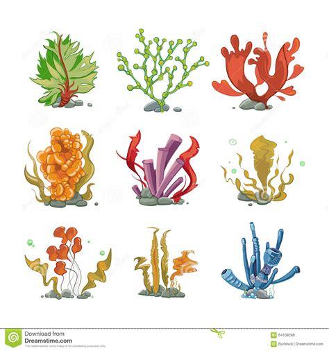 Underwater Plants In Cartoon Vector Style Stock Vector