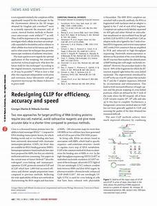 PDF Redesigning CLIP For Efficiency Accuracy And Speed