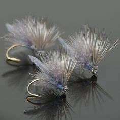 callibaetis images fly fishing fly tying fly