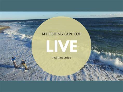 My Fishing Cape Cod Live