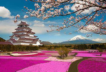 shop spring season  japan wallpaper  nature