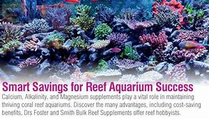 Reef Parameters Chart Drs Foster And Smith Bulk Reef Supplements Calcium