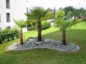 Gartengestaltung pflege burkis gartenpflege ag for Garten planen mit zimmerpflanze palme