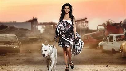 Pitbull Dog Wallpapers Screensavers Bull Pit 800a