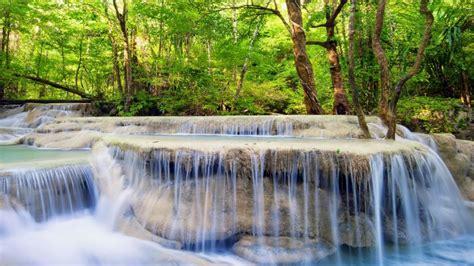 cascadas arboles bosque verano fondos de pantalla hd