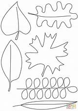 Coloring Leaves Autumn Pages Printable sketch template