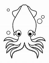 Squid Coloring Clipart Printable Template Animal Sheets Drawings Colouring Printables Giant Museprintables Books Hydro Muse Embroidery Outline Drawing Crafts Cross sketch template