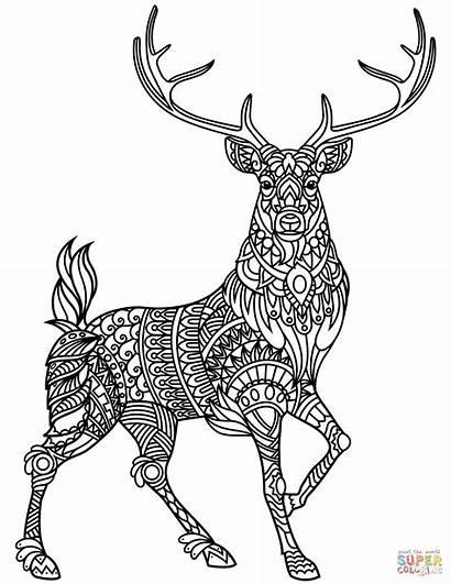 Coloring Deer Pages Zentangle Printable Drawing Colorings