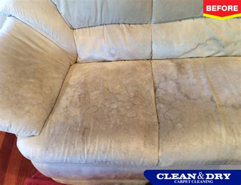 upholstery cleaning perth carpet cleaning clean dry