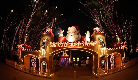 jacks christmas trees formerly eljac miami fl guide to events in miami 2014 ralph magin real estate