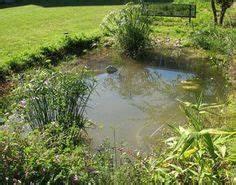 comment amenager son jardin et organiser l39espace With marvelous idees de terrasse exterieur 6 comment amenager une mare naturelle