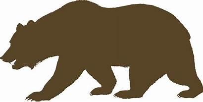 Bear Bears California Clipart Transparent Flag Webstockreview