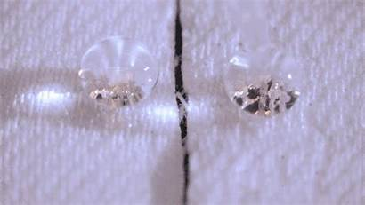 Waterproof Natural Coating Repellent Water Fabrics Coatings