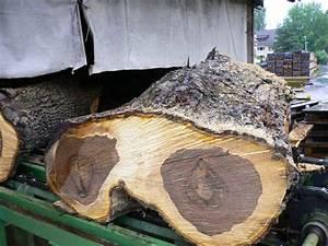 Amerikanischer Nussbaum Furnier : amerikanischer nussbaum pyramide furnier schorn groh furniere veneers ~ Frokenaadalensverden.com Haus und Dekorationen