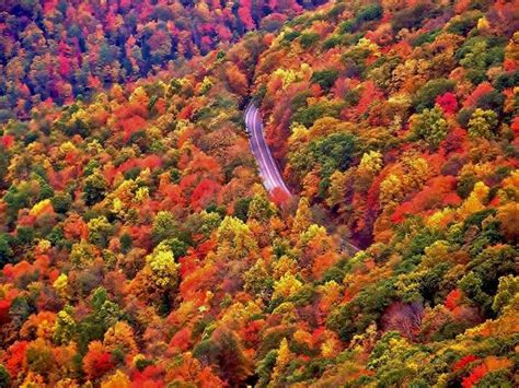 west virginia fall colors autumn is my favorite time of