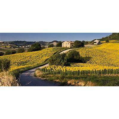 Running tour in Tuscany