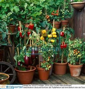 Gemüse Auf Dem Balkon : details zu 0003157778 naschbalkon obst und gem se als ~ Lizthompson.info Haus und Dekorationen