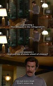 20 Best Anchorm... Anchorman Hungover Quotes