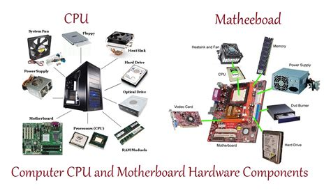 What Is Computer Hardware? Computer Hardware Components. New York University Undergraduate Programs. Master Of Nonprofit Administration. Rv Storage Sacramento Ca Year Round Allergies. Virtual Offices In Los Angeles. Car Accident Lawyer San Diego. Wireless Solutions Inc Wordpress Live Support. How Do You Say Grasshopper In Spanish. Open An Online Bank Account For Free