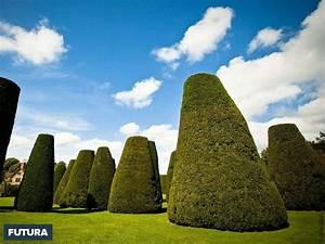 fond d39ecran jardin anglais With forum plan de maison 12 fond decran paysage feerique