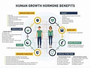 As We Start To Age  Our Human Growth Hormones  Hgh  Decrease Which Can Change Our Energy Levels