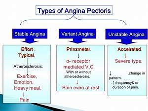 Angina - THE BIO-WEB  Coronary artery spasm Unstable angina