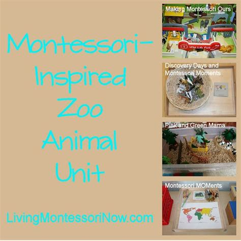 124 best images about zoo school theme on 229 | 3ed11a091302e1ff876142986b36f696 zoo animal activities montessori preschool