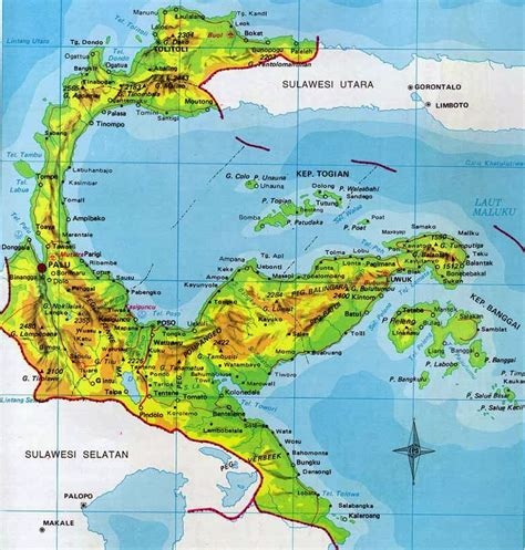 contained  sulawesi