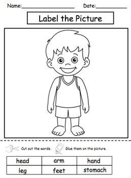 body parts science unit  kids  autism  hailey