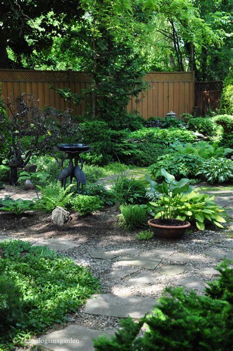 focal point in garden three dogs in a garden creating a focal point part 2