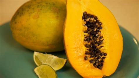 how to tell if a papaya is ripe when is it ripe papaya youtube