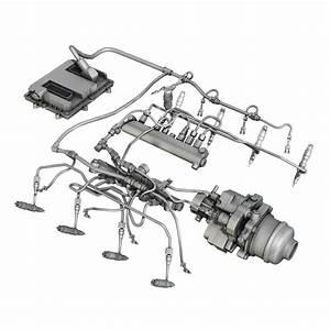 Injection System Of A V8 Engine 3d Model  U2013 Buy Injection