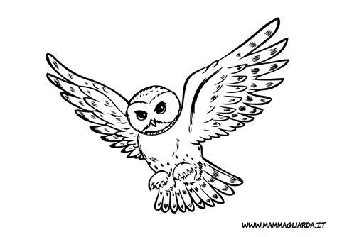 disegni da colorare top wing disegni da colorare di top wing