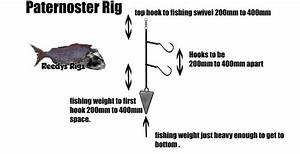 Fishing Rig Tying Learn How To Tie Snapper Rigs Sliding