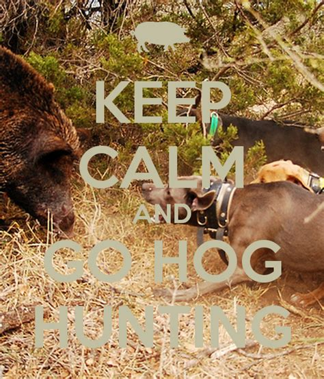 Hog Hunting Memes - hog hunting memes 28 images pulled pork best 25 hog hunting ideas on pinterest wild hogs
