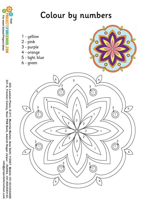kids science projects rangoli color  numbers