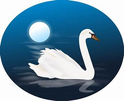 Swan Clipart Swans Clip Animated Mum Clipground