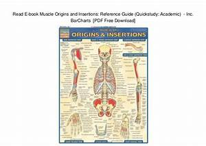 Muscle Origin And Insertion Study Guide Pdf