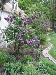 17 Best images about Xeriscape in Colorado on Pinterest ...