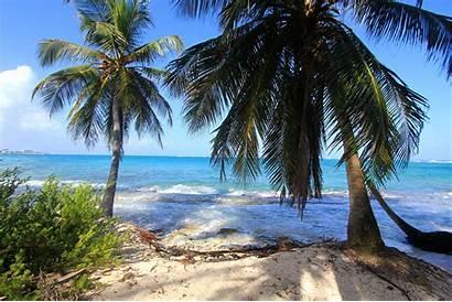 Colombia Andres San Kolumbien Waves Palms Nature
