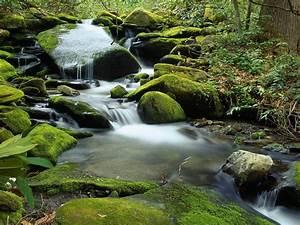 Landscape, Mountain, Stream, Rocks, With, Green, Moss, Wallpaper