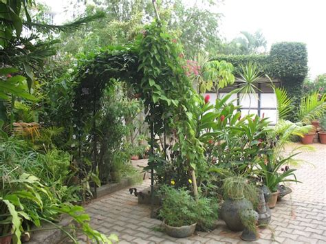 indian home garden pictures ethnic indian home kaveri chinnappa s coorg inspired home in bangalore interior design travel
