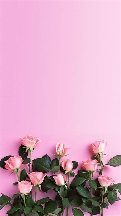 flower iphone background best 25 wallpaper ideas on screensaver
