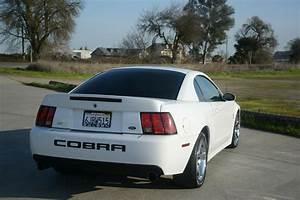 Built 2003 Ford Mustang SVT Cobra Has 650 Horsepower At The Wheels