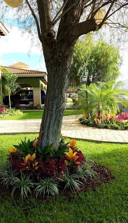 paisajismo  jardines decoracion de jardines jardines