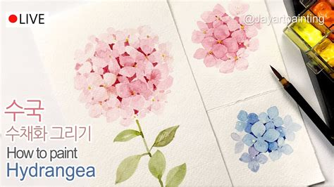 How To Paint Hydrangeas In Watercolor  Jay Lee Youtube