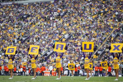 LSU self-imposes sanctions on football team, bans Browns ...