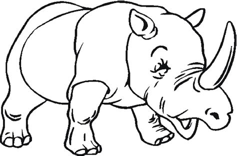 zoo animals coloring pages  bestofcoloringcom